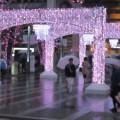 ~博多の夜桜を見に行く~