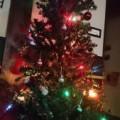 クリスマス準備part2