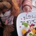 ケアマネ○子のお気楽ブログ(ケアプランサービスちくしの荘)