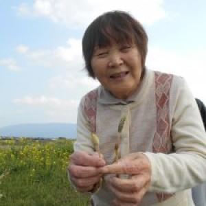 春です♪ 桜に菜の花♪