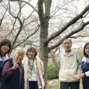 桜見物(発心公園)