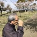 令和最後の桜見♪