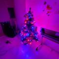 ハッピークリスマス 2019年