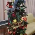 ☆もうすぐクリスマス☆