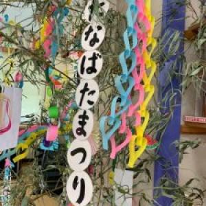 笹の葉さ~らさら☆★
